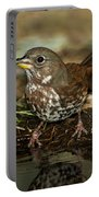 Fox Sparrow Drinking Portable Battery Charger