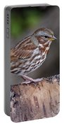 Fox Sparrow Pictures 16 Portable Battery Charger