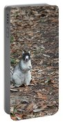 Fox Squirrel Curious Portable Battery Charger