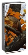 Fox Squirrel In Autumn Portable Battery Charger