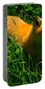 Fox Trot Portable Battery Charger