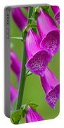 Foxglove Digitalis Purpurea Portable Battery Charger