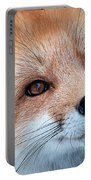 Foxy Lady Portable Battery Charger by Bianca Nadeau