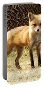 Foxy Momma Portable Battery Charger