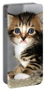 Foxy The Kittens Big Eyes Portable Battery Charger