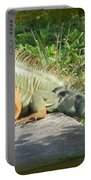 Framed Iguana Portable Battery Charger