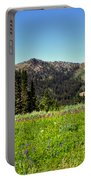 Framed Mountain Landscape Portable Battery Charger