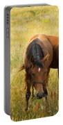 Free Happy Horse Joy On Samsoe Island Denmark  Portable Battery Charger