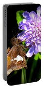 Silver Spotted Skipper Portable Battery Charger