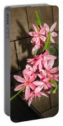 Freesias II Portable Battery Charger