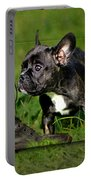 French Bulldogs Portable Battery Charger by Heike Hultsch