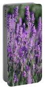 Fresh Lavender  Portable Battery Charger
