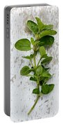 Fresh Oregano Portable Battery Charger by Nailia Schwarz