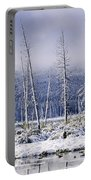 Fresh Snowfall And Bare Trees Portable Battery Charger