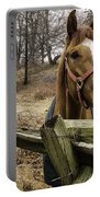 Friendly Horse Portable Battery Charger
