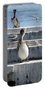 Pelican Friends Portable Battery Charger