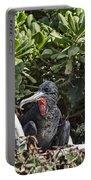 Frigate Bird- Hawaii V2 Portable Battery Charger