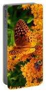 Fritillary On Butterfly Weed Portable Battery Charger