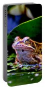 Frog 2 Portable Battery Charger