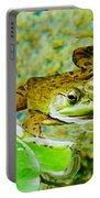 Frog  Abby Aldrich Rockefeller Garden Portable Battery Charger