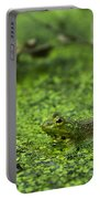 Frog In Swamp 2 Of 3 Portable Battery Charger