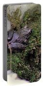 Frog On Moss On Wall Portable Battery Charger