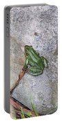 Frog On Rocks Portable Battery Charger