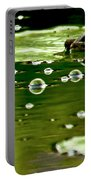 Frog Pond Space Galaxy Portable Battery Charger