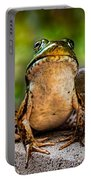 Frog Prince Or So He Thinks Portable Battery Charger by Bob Orsillo