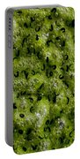 Frog Spawn Portable Battery Charger