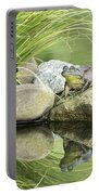 Bull Frog On A Rock Portable Battery Charger