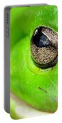 Frog's Eye Portable Battery Charger by Kaye Menner