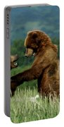 Frolicking Grizzly Bears Portable Battery Charger