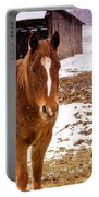 Frolicking In The Snow  Portable Battery Charger