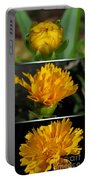 From Bud To Bloom - Coreopsis Named Early Sunrise Portable Battery Charger