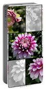 From Bud To Bloom - Dahlia Named Brian Ray Portable Battery Charger