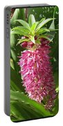 From Bud To Bloom - Eucomis Named Leia Portable Battery Charger