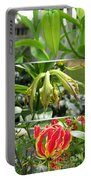 From Bud To Bloom - Gloriosa Named Rothschildiana Portable Battery Charger