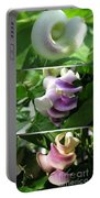 From Bud To Bloom - Phaseolus Caracalla Portable Battery Charger