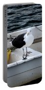 From Rockport Ma A Seagull Chilling Out In A Rowboat Portable Battery Charger
