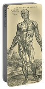 Front Of Male Human Body.anatomical Portable Battery Charger