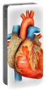 Front View Of Human Heart Portable Battery Charger by Stocktrek Images