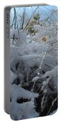 Frost Grass Portable Battery Charger