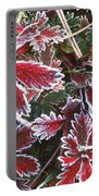 Frost On Wild Strawberry Portable Battery Charger