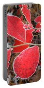 Frosted Blueberry Leaves Portable Battery Charger