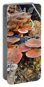 Frosted Cascading Mushrooms Portable Battery Charger