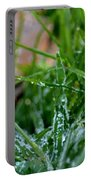 Frosted Dew Portable Battery Charger