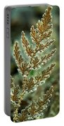 Frosted Fern Portable Battery Charger