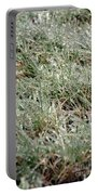 Frosted Grass Portable Battery Charger