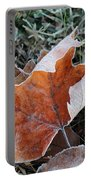 Frosted Leafs Portable Battery Charger